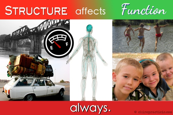 Structure Affects Function Dr. Justin Swanson Austin Chiropractor